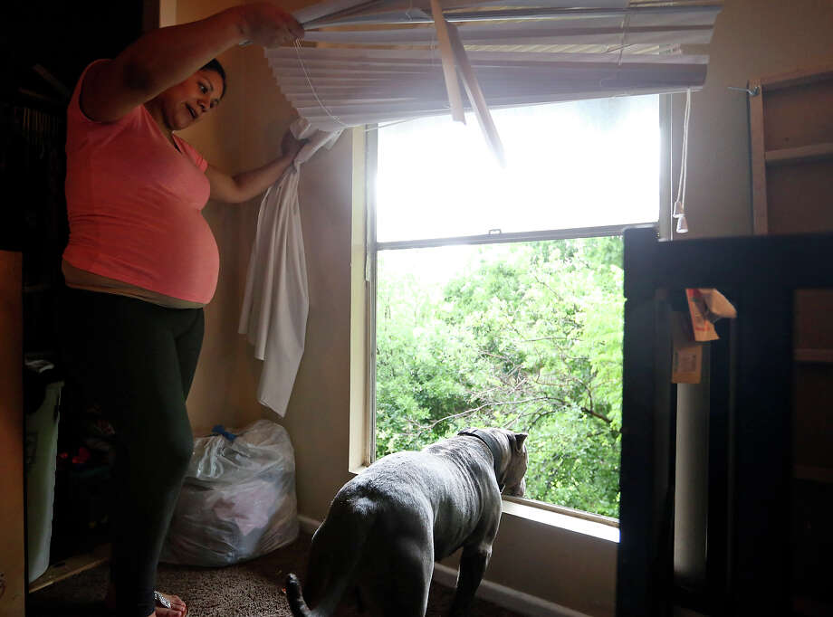 "South Point Oaks Apartments resident Destiny Rodriguez shows the missing section of a window, as her dog ""Dynamite"" looks out, in her bedroom Saturday May 23, 2015 at the South Point Oaks Apartments in the 4200 block of NW Loop 410. Photo: Edward A. Ornelas, Staff / San Antonio Express-News / © 2015 San Antonio Express-News"