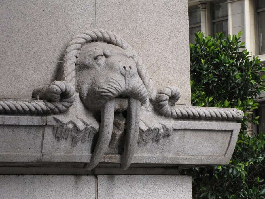 No building flourish is more startling -- or poignant -- than the row of walrus heads on the north side of the 300 block of California Street. The tusked granite mammals are all that remain of the Alaska Commercial Building, demolished in 1975 to make way for a 22-story office tower. Photo: John King, The Chronicle