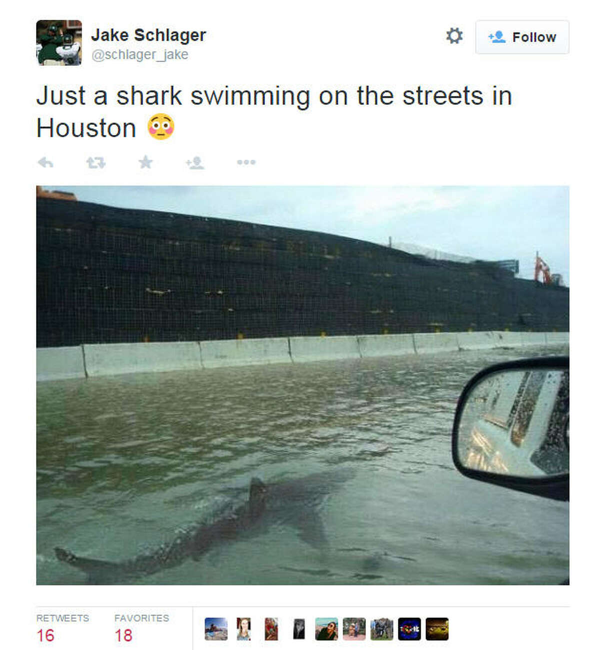 Highway sharks No a shark didn't join Houstonians on their morning commute during the Memorial Day flooding. The hoax dates back to Hurricane Irene, and involves a shark photoshopped from a 2005 image.