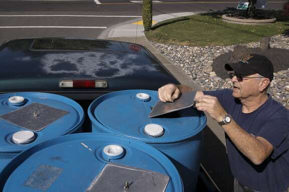 Dublin resident Art King collects recycled water from Dublin San Ramon Services District Recycled Water Plant in Pleasanton, Calif., to keep his yard looking green during the drought, as seen on Fri. April 3, 2015.