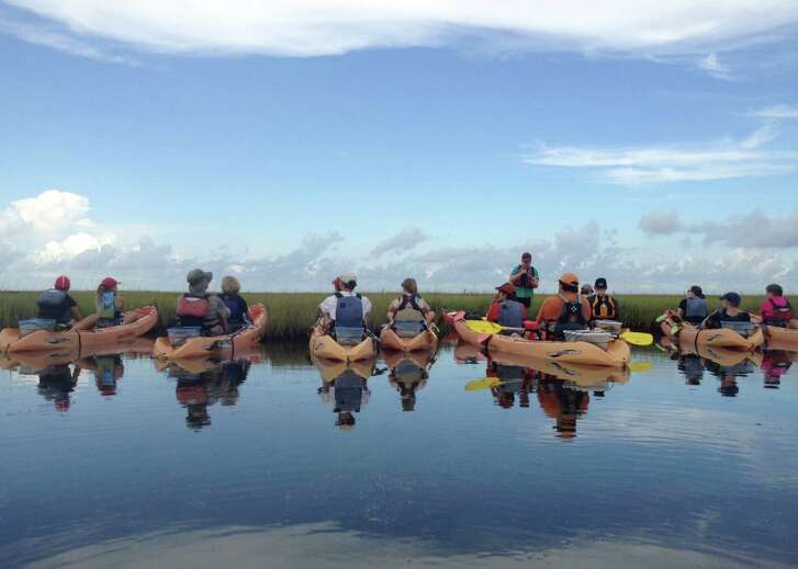 Kayakers learn about the coastal ecosystem in an Artist Boat class.