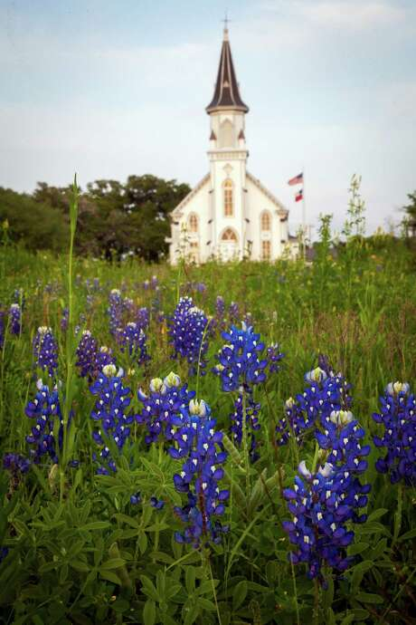 Sts. Cyril and Methodius Church rises over a field of bluebonnets on Thursday, March 29, 2012, in Dubina, Texas. ( Smiley N. Pool / Houston Chronicle ) Photo: Smiley N. Pool, Staff / © 2012  Houston Chronicle