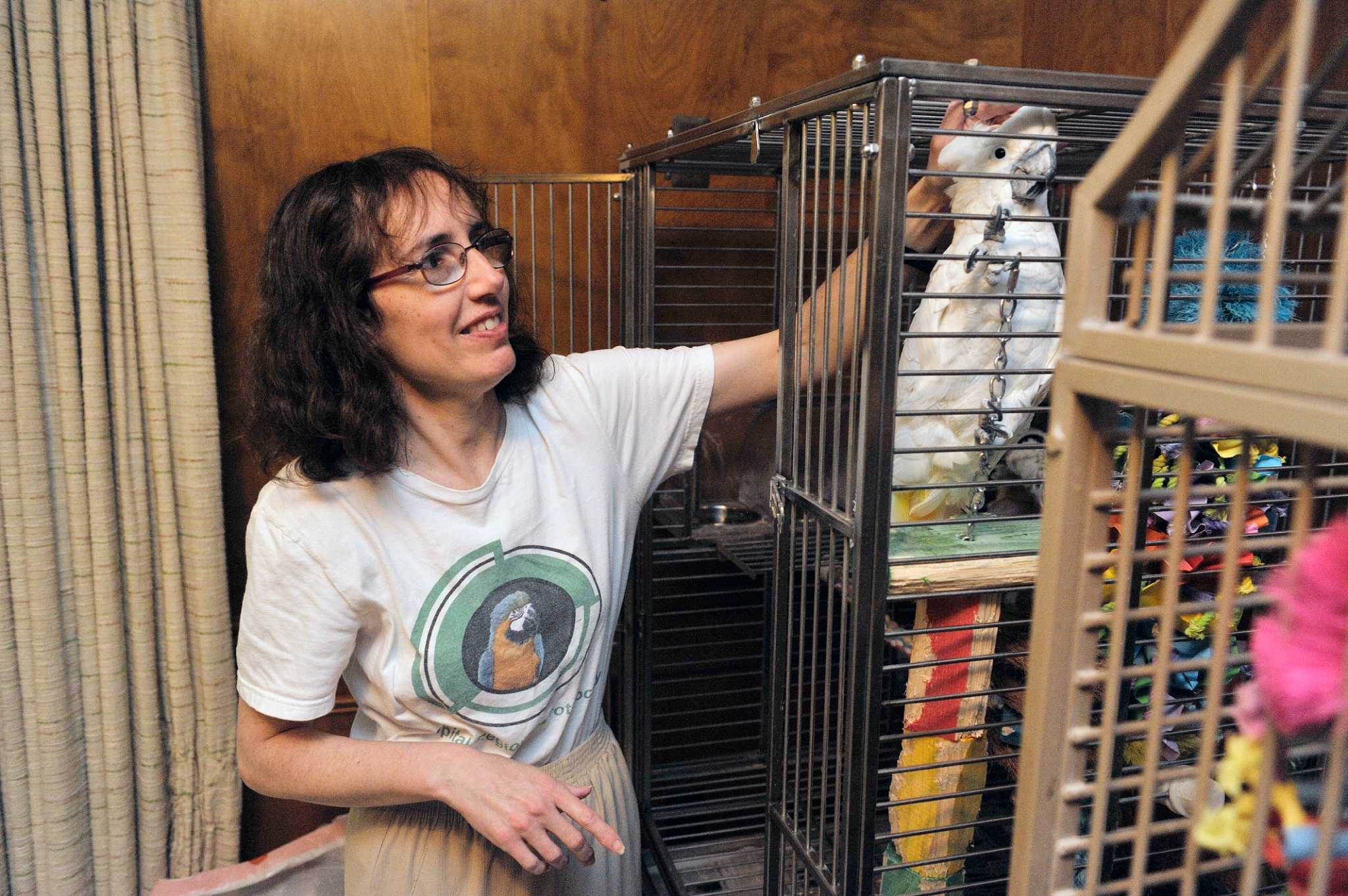 Capital Region Parrot Society on mission to rescue parrots