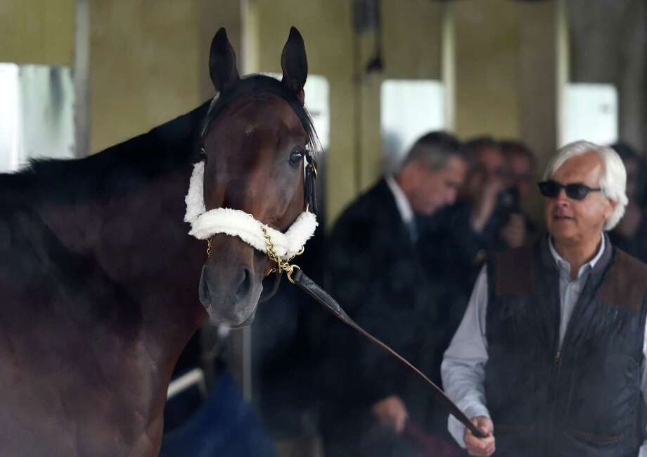 American Pharoah, in the hands of trainer Bob Baffert looks outside Barn 1 Jun 2, 2015 after arriving at Belmont Park in Elmont, N.Y.  American Pharoah will be the odds on favorite to win the Triple Crown of thoroughbred racing on Saturday in the Belmont Stakes.   (Skip Dickstein/Times Union) Photo: SKIP DICKSTEIN