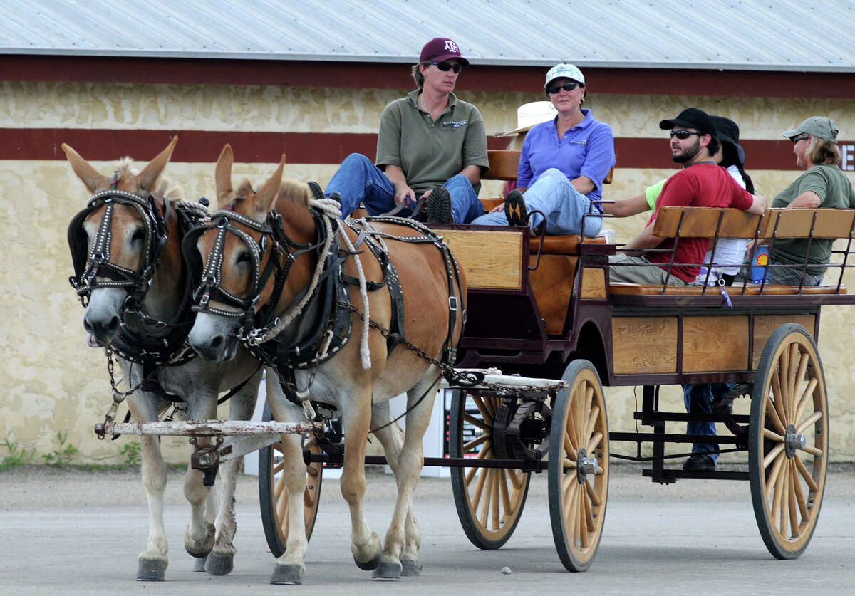 Visitors to a previous Texas Sawmill Festival enjoy a wagon ride. This year's event will include replicas of historic buildings, a barbecue cook-off, a car show and lots of musical entertainment.