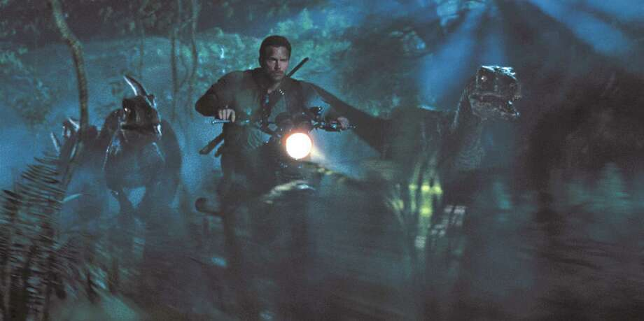 "Chris Pratt is surrounded by raptors in ""Jurassic World,"" opening Thursday night. Photo: Univeral Pictures And Amblin Entertainment"