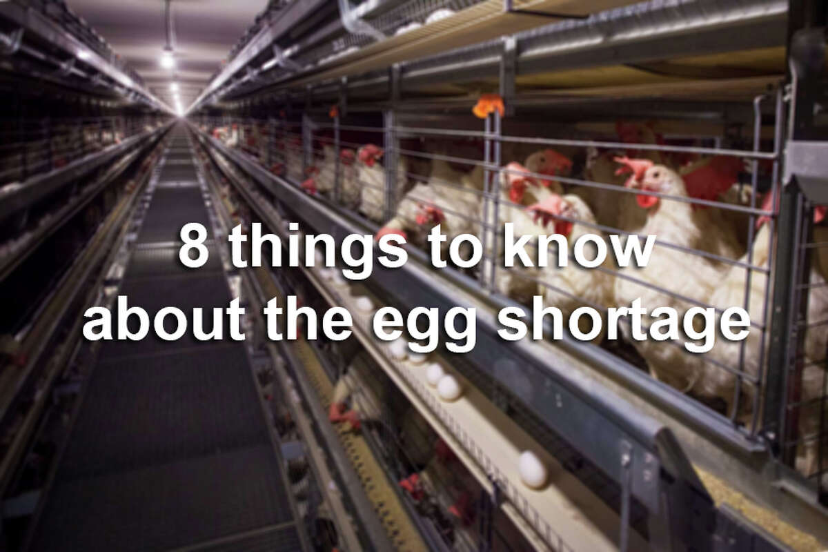 You probably have a lot of questions, and we've got your answers on the egg crisis that came out of nowhere.