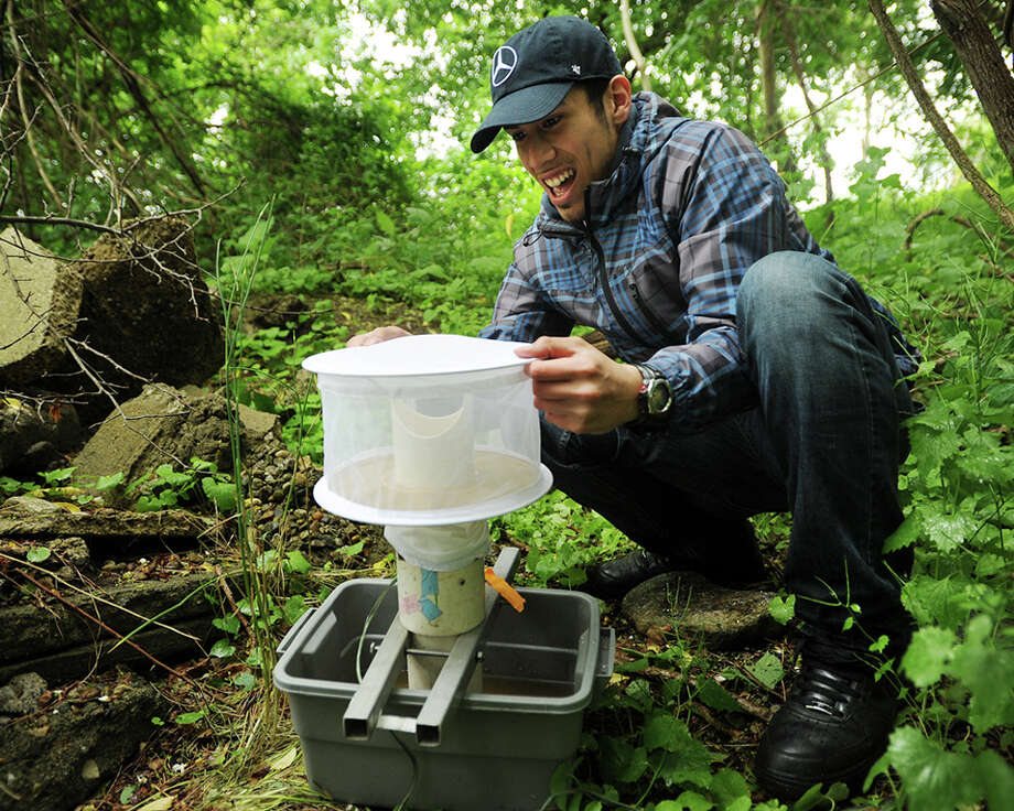 Connecticut Agricultural Experiment Station field research assistant Carlos Franco, of Bridgeport, sets a mosquito sampling trap near DeLuca Field on Main Street in Stratford, Conn. on Monday, June 1, 2015. The station collects mosquitoes every year from a wide range of locations to track West Nile Virus. Photo: Brian A. Pounds / Connecticut Post
