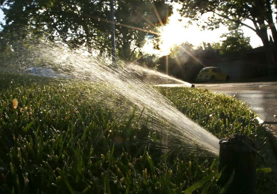 About 1 trillion gallons of drinking water is used on lawns and gardens. Photo: Rich Pedroncelli, Associated Press