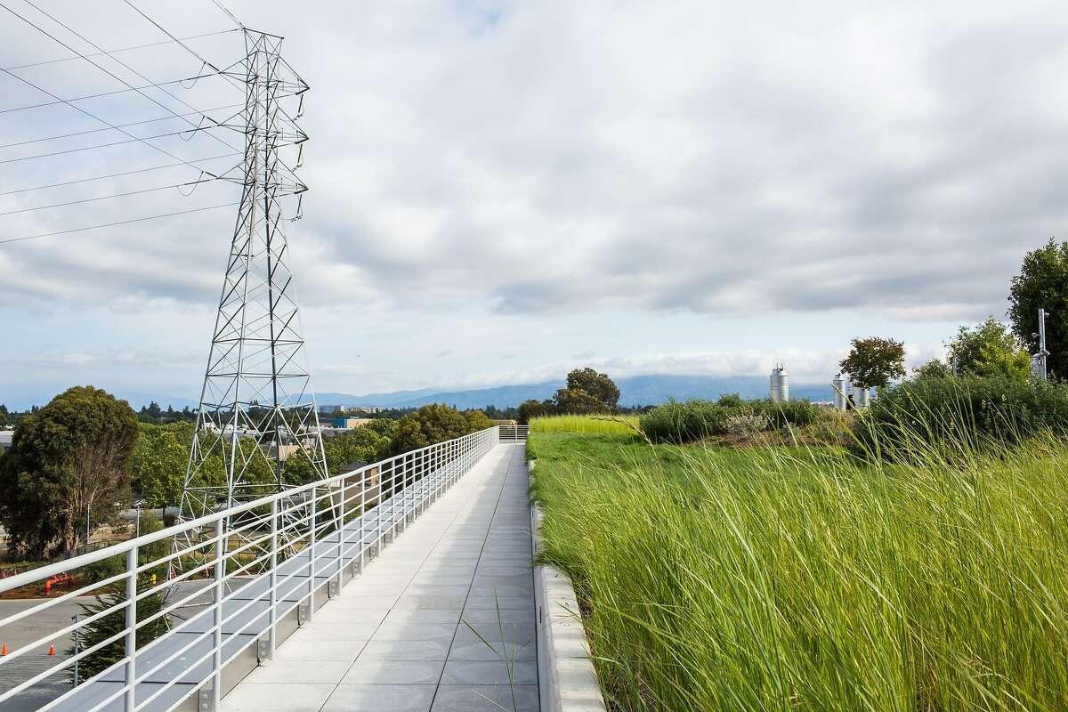 Facebook's rooftop garden