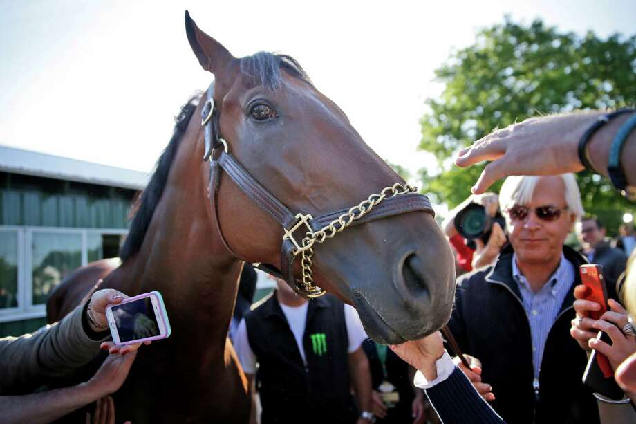 With a little help from trainer Bob Baffert, Triple Crown winner American Pharoah meets the press at Elmont, N.Y., the day after winning the Belmont Stakes. Photo: Seth Wenig, STF / AP