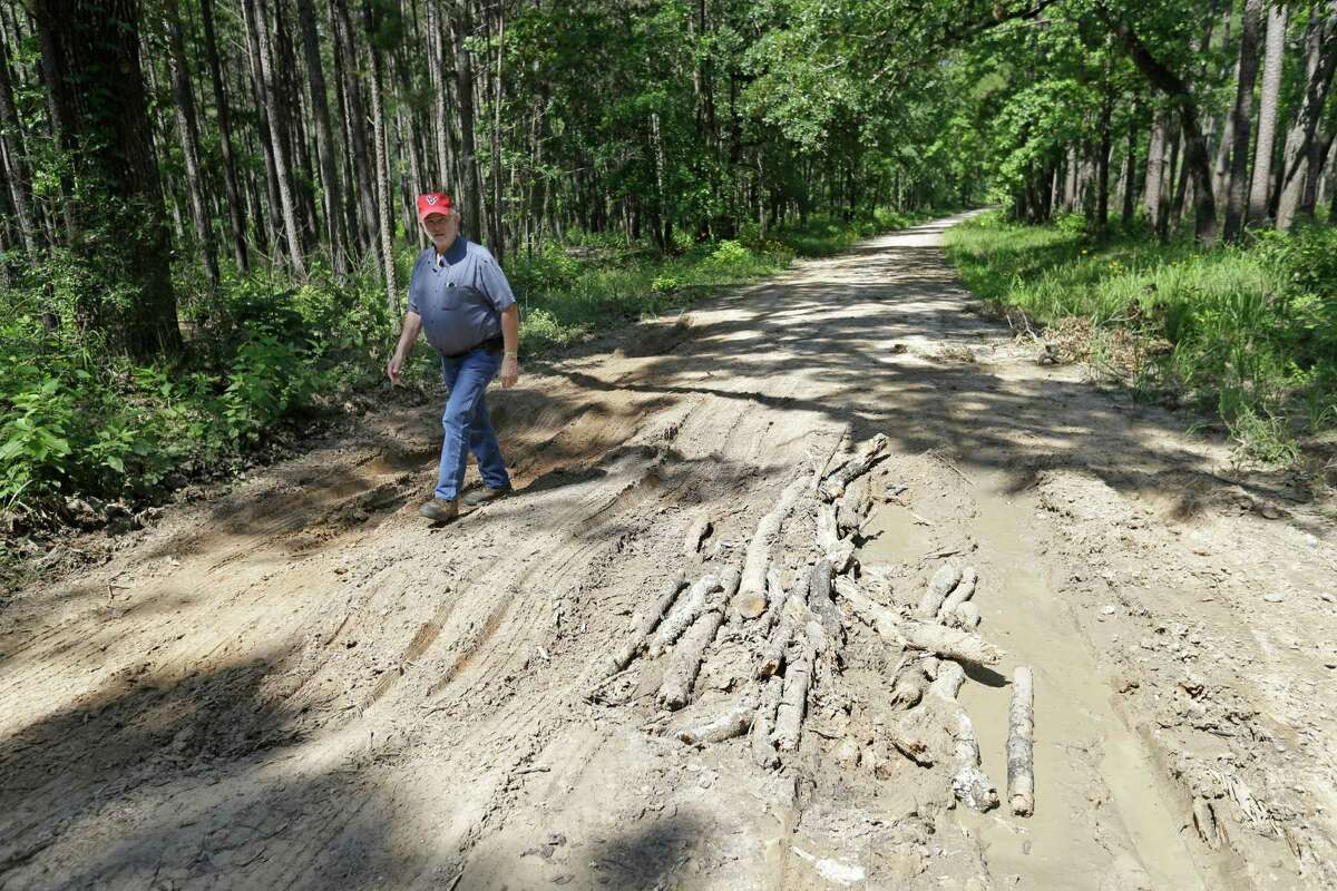 Warren Oja, Sam Houston National Forest District Ranger, checks the condition of damage from recents rains on Forest Service Road 216 shown Wednesday, June 3, 2015, in New Waverly. The road is used by the public.