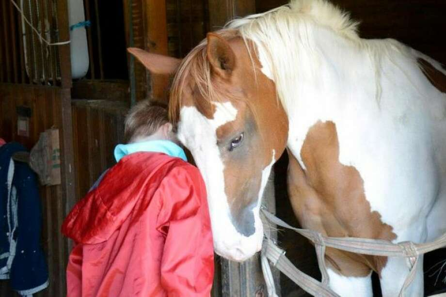 A youngster and a horse bond Photo: Contributed Photo