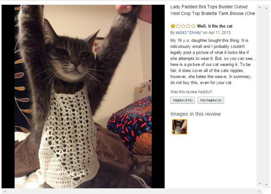 "A Houston woman identified as ""Christy"" posted a photo of her cat with her negative review of a crop top purchased by her 16-year-old daughter. (Amazon.com screen grab)"