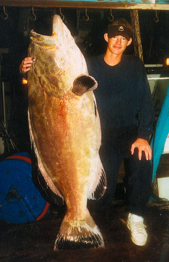 This 124-pound world record black grouper was caught in 2003 off Texas in the Gulf of Mexico. (Credit: International Game Fish Association)