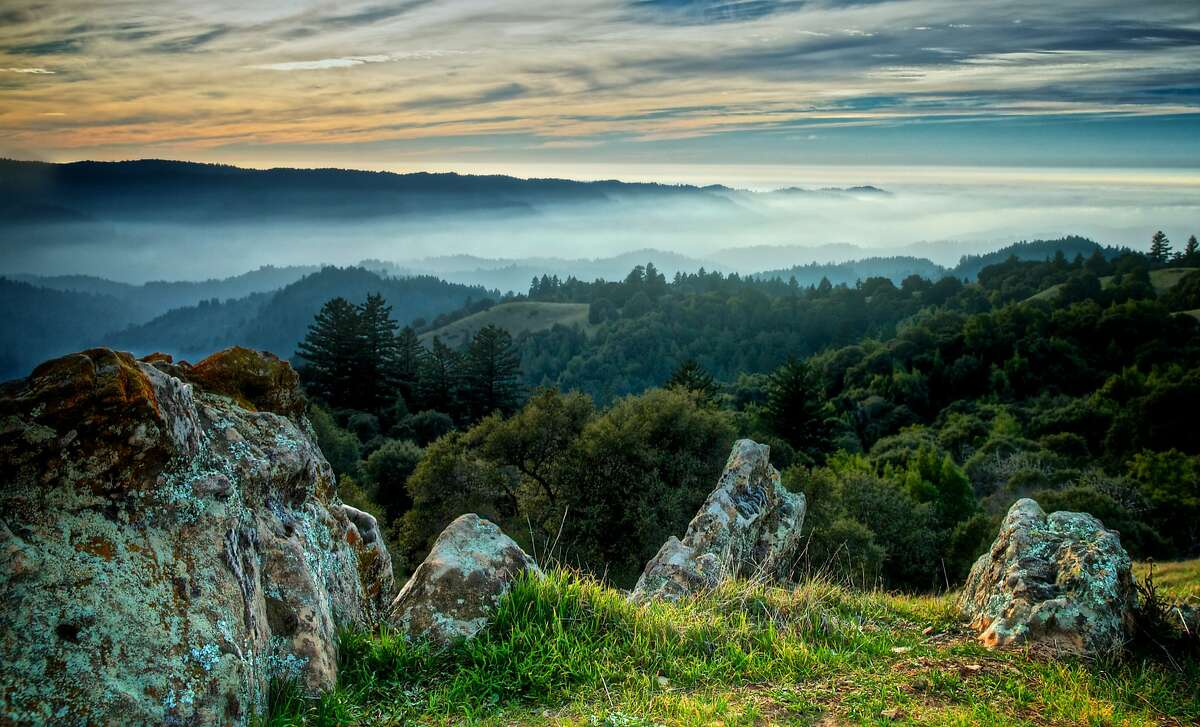 Gorgeous scene from near the Stegner Bench at Long Ridge Open Space Preserve, one of the prettiest sites in the Midpeninsula Open Space District