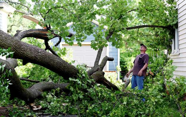 Homeowner Joe Rizzo looks at damage caused by a tree falling in his driveway at 116 Sixth Street Wednesday morning June 10, 2015 after a EF 0 tornado blew through the area yesterday in Scotia, N.Y.   (Skip Dickstein/Times Union) Photo: SKIP DICKSTEIN