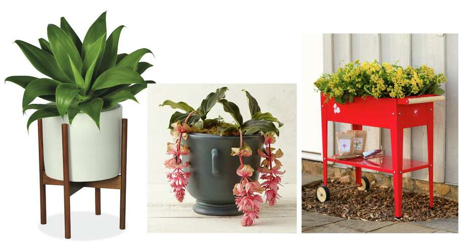From left; Room & Board's Case Study Planter with Walnut Stand; Terrain's Lug Handle Urn Planter; and Plow & Hearth's Colorful Steel Garden Trolley Planter. Illustrates PLANTERS (category l), by Lindsey Roberts, special to The Washington Post. Moved Thursday, April 30, 2015. (MUST CREDIT: Room & Board; Terrain; Plow & Hearth.)   From left; Room & Board's Case Study Planter with Walnut Stand; Terrain's Lug Handle Urn Planter; and Plow & Hearth's Colorful Steel Garden Trolley Planter. Illustrates PLANTERS (category l), by Lindsey Roberts, special to The Washington Post. Moved Thursday, April 30, 2015. (MUST CREDIT: Room & Board; Terrain; Plow & Hearth.) Photo: Courtesy Photo, STR / THE WASHINGTON POST