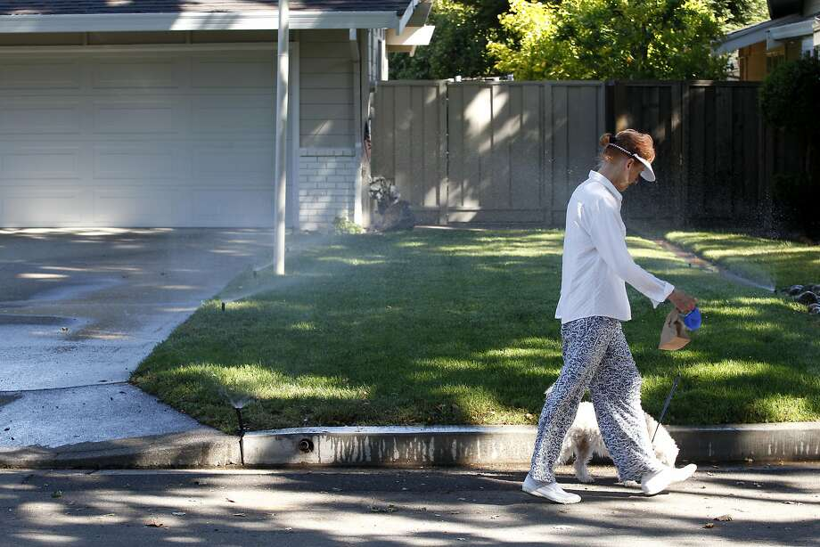 Sprinklers spray water on the front yard of a home the morning after a full day of rain on Thursday, June 11, 2015 in Lafayette, Calif. Photo: Beck Diefenbach, Special To The Chronicle