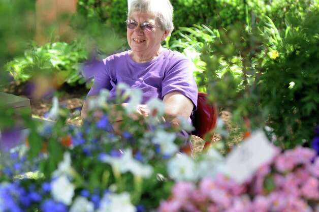 Betsy VanArnum of Greenfield Center sells flowers, succulents, bonsais and fairy gardens on opening day of the Ballston Spa Farmers' Market on Thursday, June 11, 2015, at Wiswall Park in Ballston Spa, N.Y. The market is open on Thursdays from 3 to 6 p.m. and Saturdays from 9 a.m. to noon through September 26. (Cindy Schultz / Times Union) Photo: Cindy Schultz / 00032188A