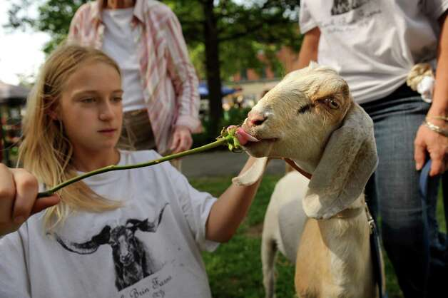 Tessa Murray of Mack Brin Farms, left, feeds a rose to Jack, her 4H Nubian goat, on opening day of the Ballston Spa Farmers' Market on Thursday, June 11, 2015, at Wiswall Park in Ballston Spa, N.Y. The market is open on Thursdays from 3 to 6 p.m. and Saturdays from 9 a.m. to noon through September 26. (Cindy Schultz / Times Union) Photo: Cindy Schultz / 00032188A