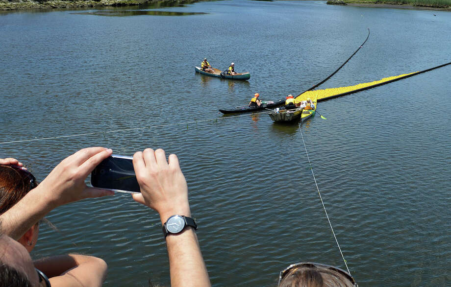 Crowds lined the Saugatuck River banks and Post Road bridge tp cheer -- and photograph -- the yellow rubber duckies in the annual Great Duck Race sponsored Saturday by the Westport Sunrise Rotary Club. Photo: Jarret Liotta / Jarret Liotta / Westport News