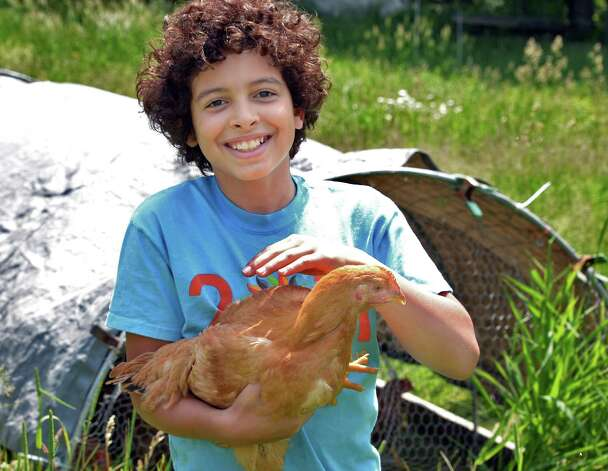 Emmet Vitale-Penniman, 10, with one of their pastured free range chickens at his family's Soul Fire Farm Thursday June 11, 2015 in Grafton, NY.   (John Carl D'Annibale / Times Union) Photo: John Carl D'Annibale / 00032258A