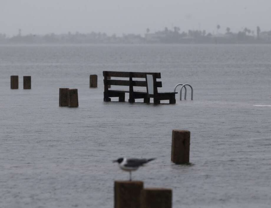 A bird stood on a piling in Offatts Bayou in Galveston as Tropical Storm Bill approached in June. Photo: James Nielsen/Houston Chronicle