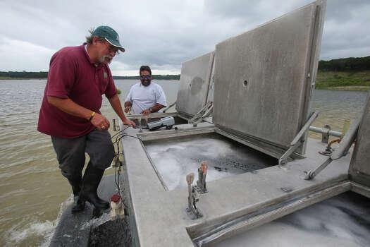 Medina lake stocked with 204 000 largemouth bass for Fish stocking texas