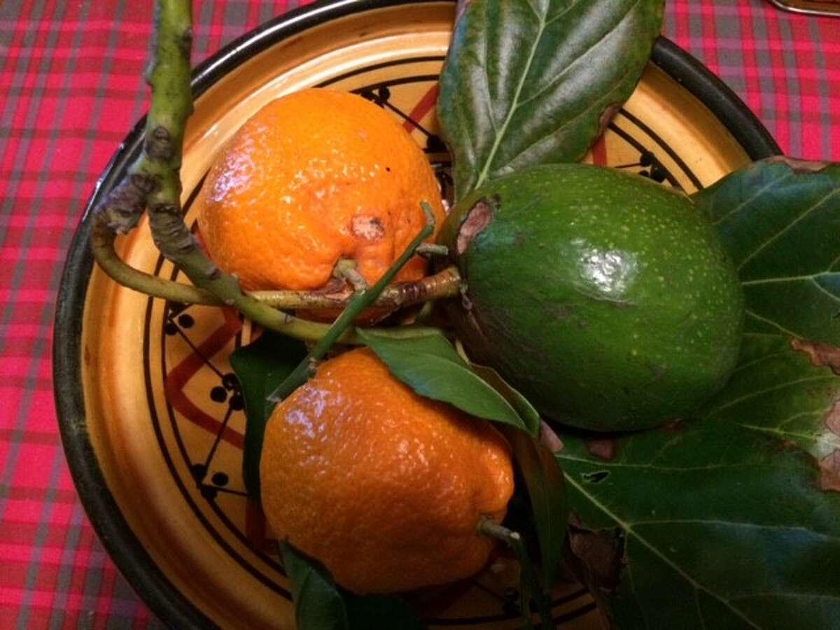 Avocado and tangerines (but no Elvis)