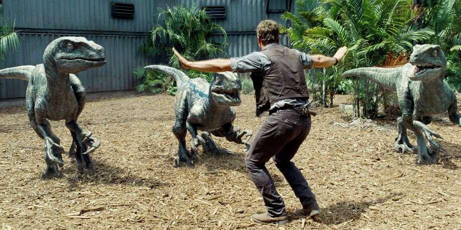 "Chris Pratt stars in ""Jurassic World."" Photo: HANDOUT, STR / THE WASHINGTON POST"