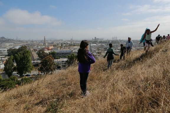 "Summer campers from YMCA Bayview explore the open space above Palou Phelps Mini-Park in San Francisco, California, during an ""eco-blitz"" hosted by local environmentalists on Tuesday, June 16, 2015. The open space is in jeopardy because a proposed development project would include an access road bisecting the public land. The eco-blitz, hosted by local environmentalists, aimed to highlight the biodiversity that would be threatened by development."