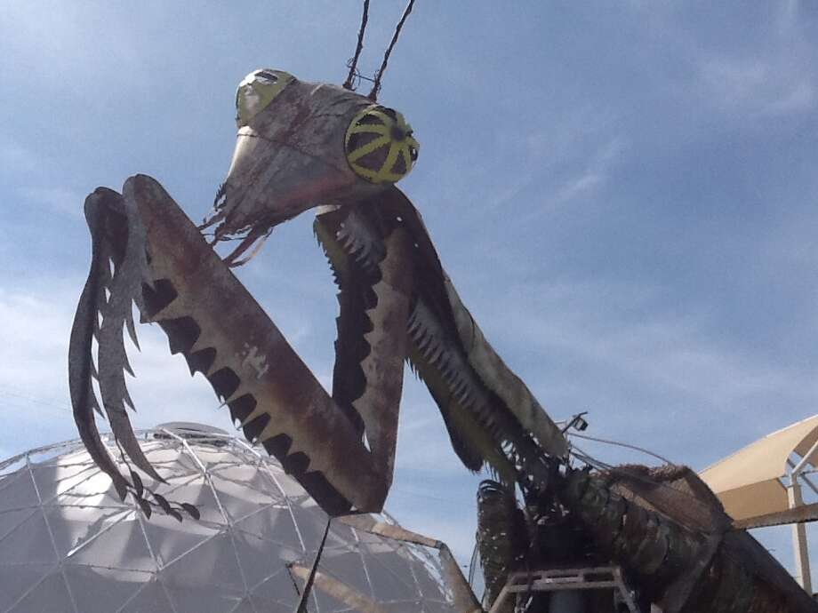 Kirk Jellum's The Mantis is 40 feet tall and 30 feet wide. It is a 150:1 scale sculpture that stands at the Downtown Container Park in Las Vegas. Photo: Hector Saldana / San Antonio Express-News