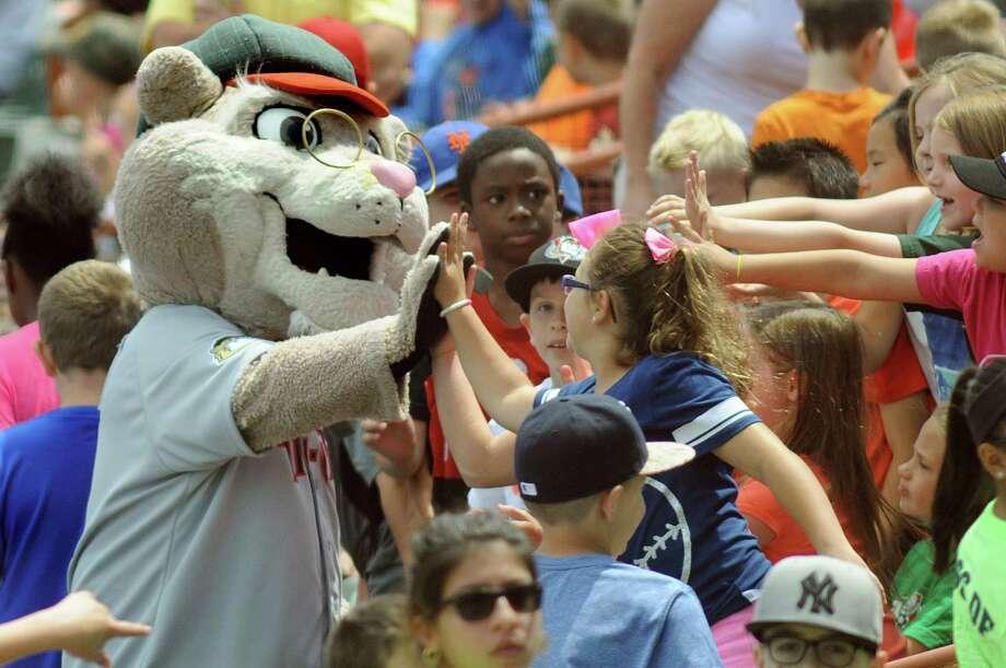 Union College Dutchmen Mascot ValleyCat s mascot Pappy  left