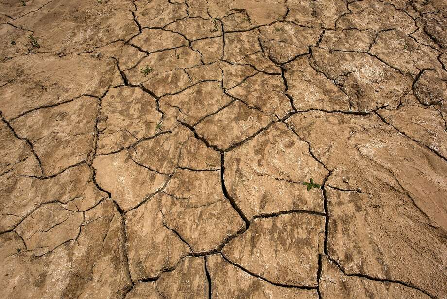 A North Bay congressman is turning to the public for ideas on how to deal with the drought in Congress. Photo: David Paul Morris, Bloomberg