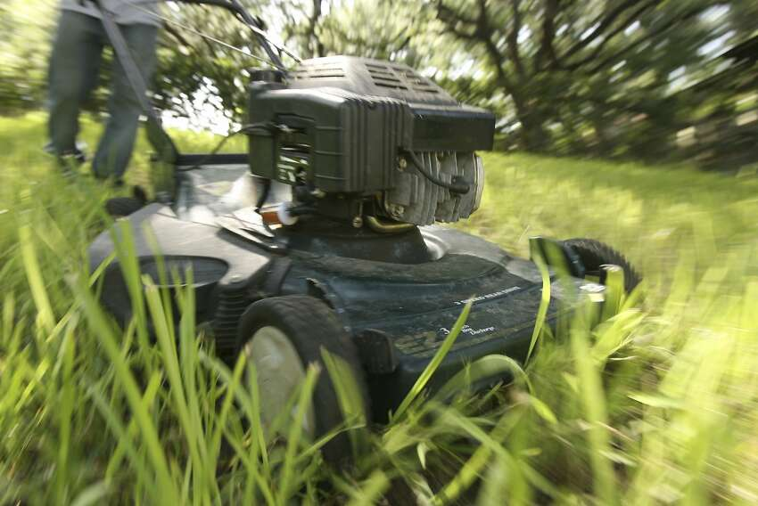 You buy a lawn mower...and then hire someone to mow the lawn.