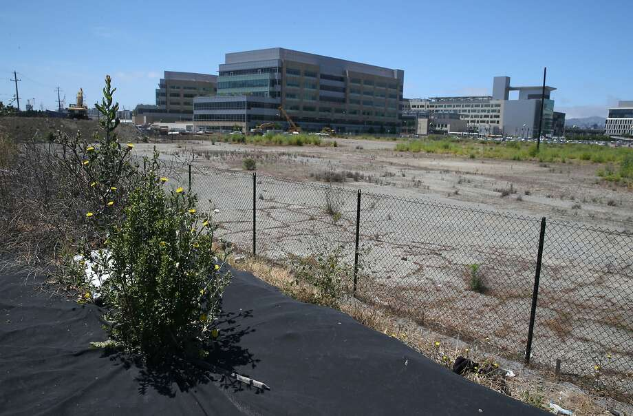 Weeds sprout through a tarp covering a mound of dirt on the Mission Bay site in San Francisco, Calif. on Thursday, June 18, 2015 where the Warriors hope to build a new basketball arena. Photo: Paul Chinn, The Chronicle
