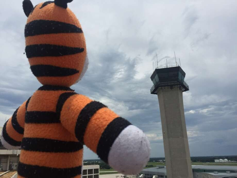 A stuffed tiger named Hobbes was stranded at Tampa International Airport when a boy named Owen lost track of him. Photo: Tampa International Airport