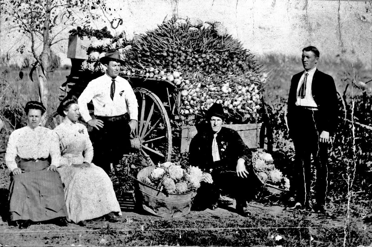 Marie Persyn (wife of Arthur), Hortense Persyn, Pete Persyn, Arthur Persyn, and Gus Persyn pose in 1911 beside a vegetable cart on a farm near San Antonio. Vegetables included cauliflower, beets and turnips that the family regularly sold at Haymarket Plaza in San Antonio.