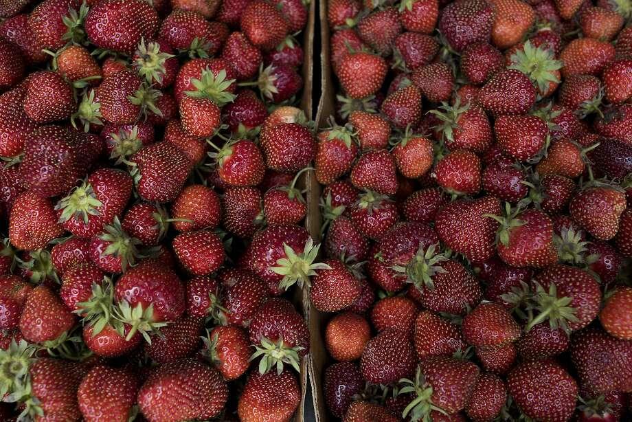 Fresh strawberries make a wonderful preserve. Photo: Daniel Acker, Bloomberg