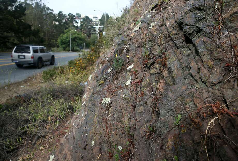 Cars drive on O'Shaugnessy Boulevard past rock formations known as radiolarian chert in San Francisco, Calif. on Friday, June 19, 2015. Photo: Paul Chinn, The Chronicle