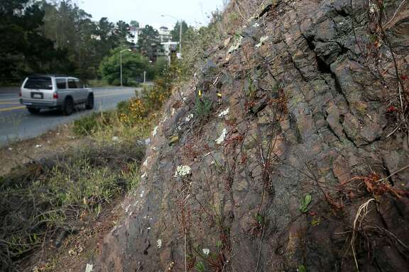 Cars drive on O'Shaugnessy Boulevard past rock formations known as radiolarian chert in San Francisco, Calif. on Friday, June 19, 2015.