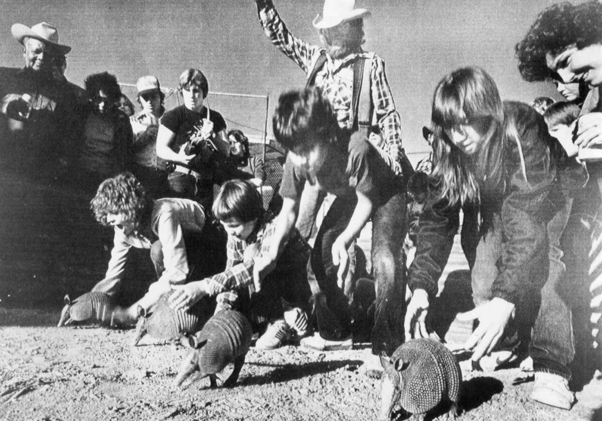 The start of an armadillo race in Fredericksburg at the 300 millionth birthday party for the animals in 1982.