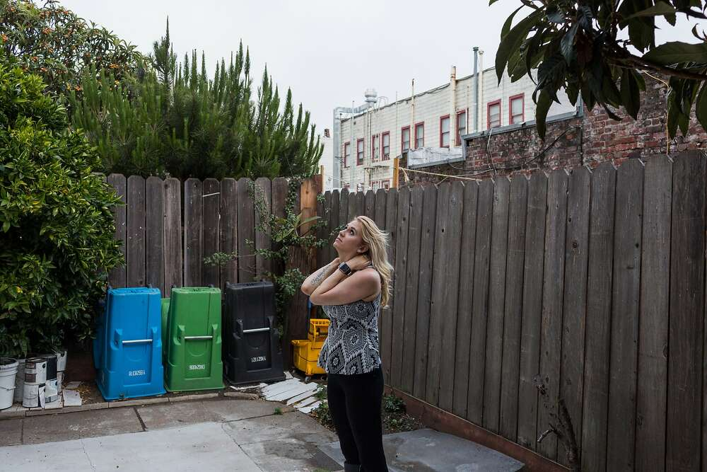 The Airbnb Impact - San Francisco Chronicle