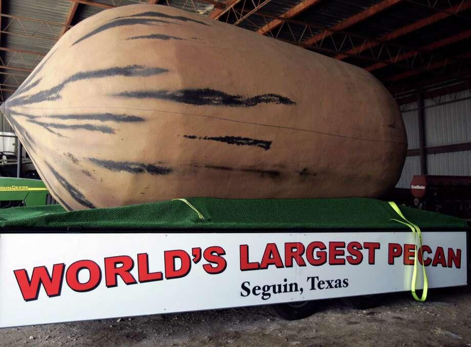 The World's Largest Pecan is in Seguin. Photo: OMAR PEREZ, San Antonio Express-News / SAN ANTONIO EXPRESS-NEWS