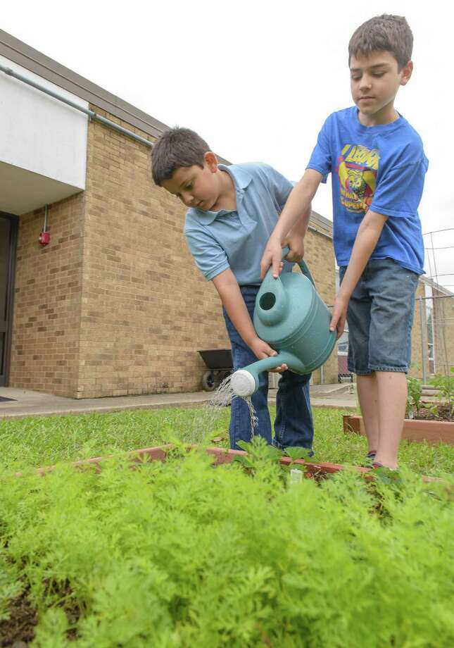 Dante McCray, 7 and Ryan Shoemake, 10 water the carrots while working in the garden at Shadybend Elementary School 05/08/15.   ( Photos by ÂKim Christensen) Photo: ÂKim Christensen, Photographer / ©Kim Christensen