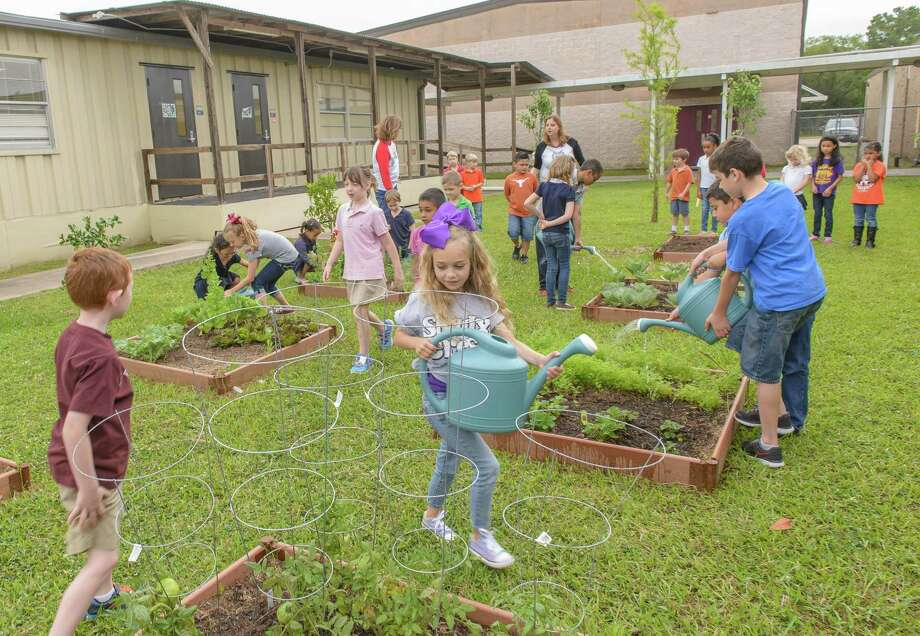 First- and fourth-graders enjoy working in the garden at Shadycrest Elementary School in Pearland.First- and fourth-graders enjoy working in the garden at Shadycrest Elementary School in Pearland. Photo: ÂKim Christensen, Photographer / ©Kim Christensen