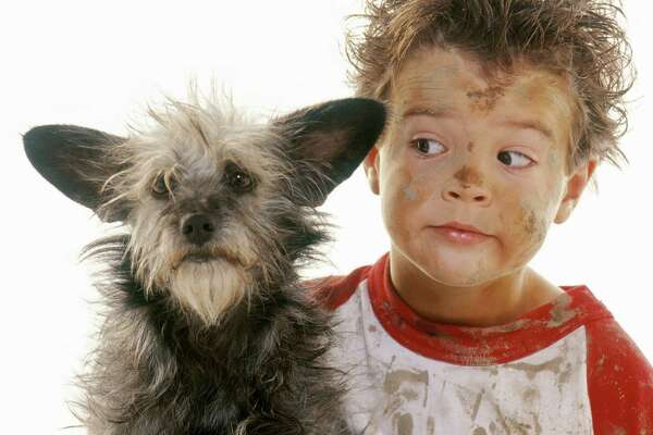 Boy (8-10) with muddy face and clothes looking at dog, close-up