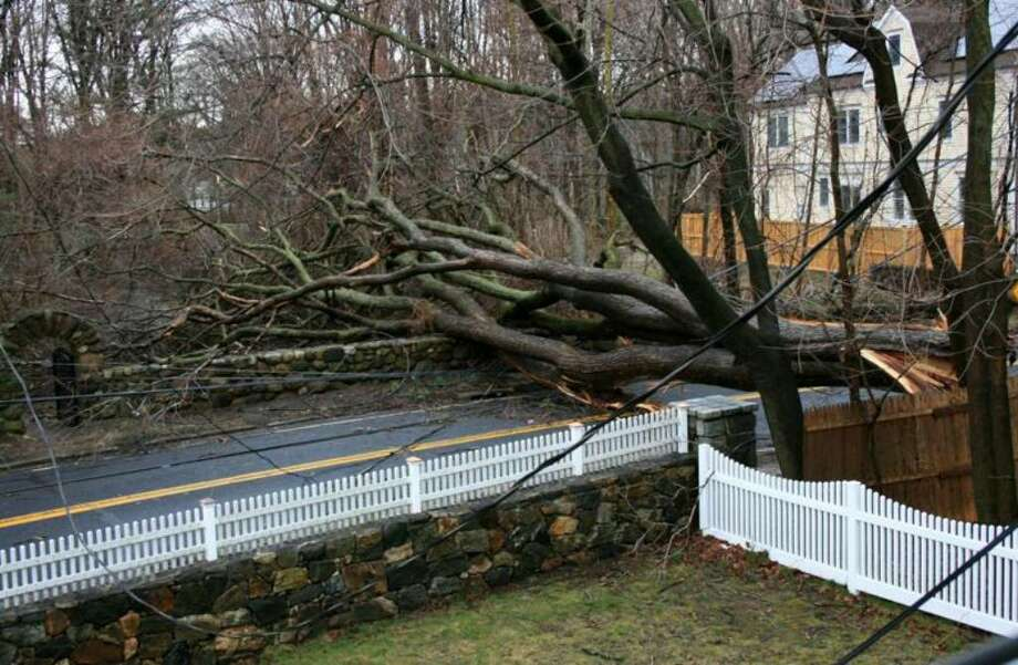 This 300-year-old tree fell on Mansfield Avenue near Sedgewick Avenue on Saturday, closing off one of Darien's main routes for several days. Photo: Shawn St. Jean / Darien News