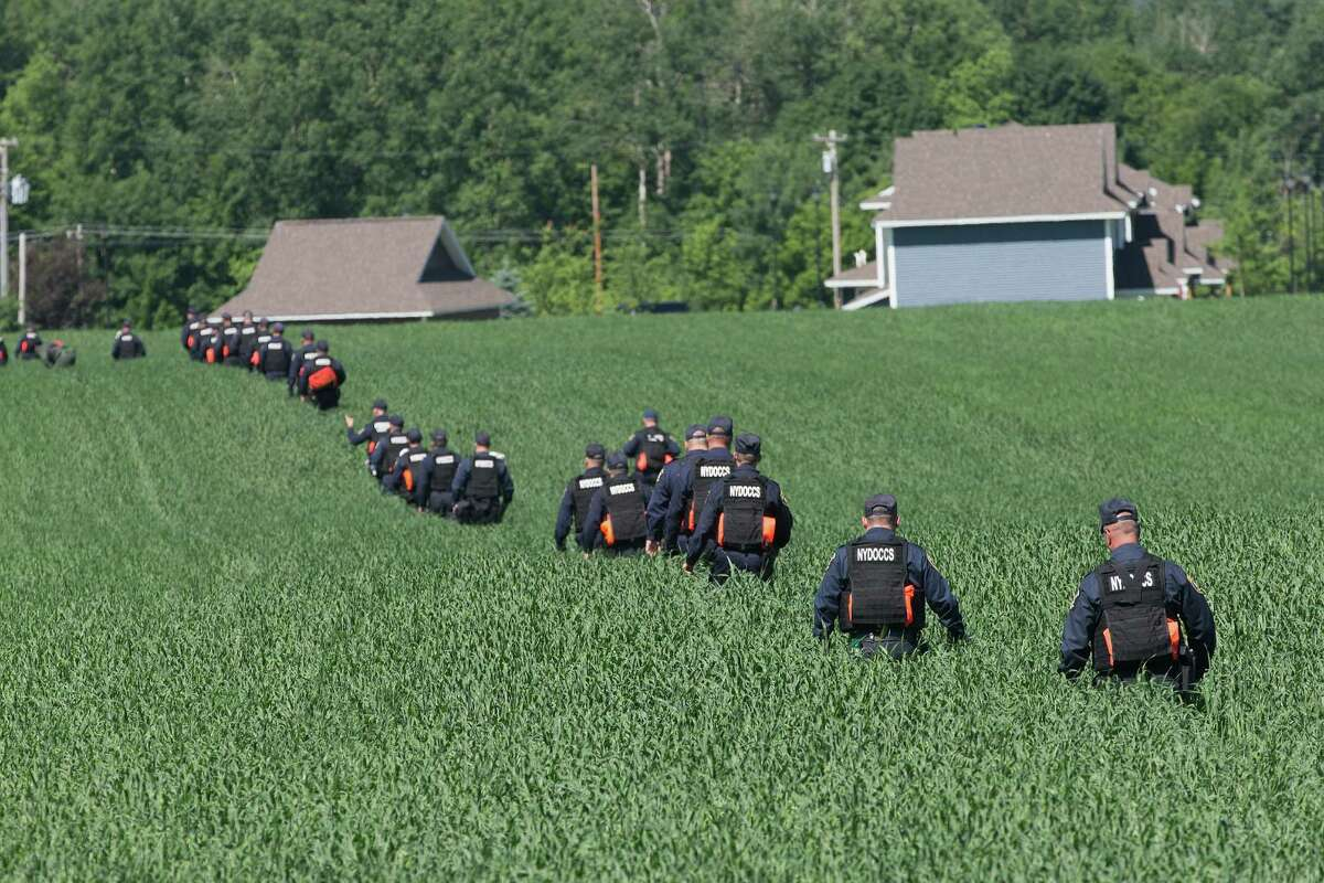 MALONE, NY - JUNE 24: Corrections officers search a field as the manhunt for convicted murderers Richard Matt and David Sweat continues on June 24, 2015 in Malone, New York. Matt and Sweat were discovered missing from a prison in nearby Dannemora on June 6. DNA from the two was reportedly found recently in a remote hunting cabin about 15 miles west of the prison. (Photo by Scott Olson/Getty Images) ORG XMIT: 561276377